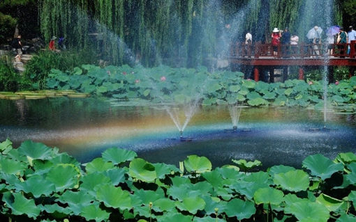 Picture of 7V Solar Power Floating Brushless Water Pump Garden Landscape Submersible Fountain