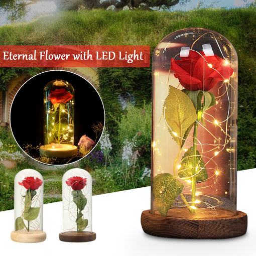 Picture of Red Rose Lights Decorations Beauty Enchanted Preserved Red Fresh Rose Glass Cover with LED Light